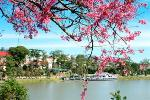 dalat-travel-guide-large-content